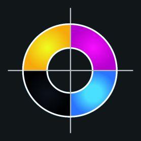 A colori in Digitale Diretta ( su tessuto scuro ) 30 x 30 cm max